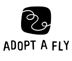 Adopt a Fly
